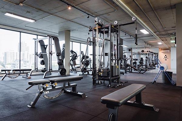 IQ Fitness free weights