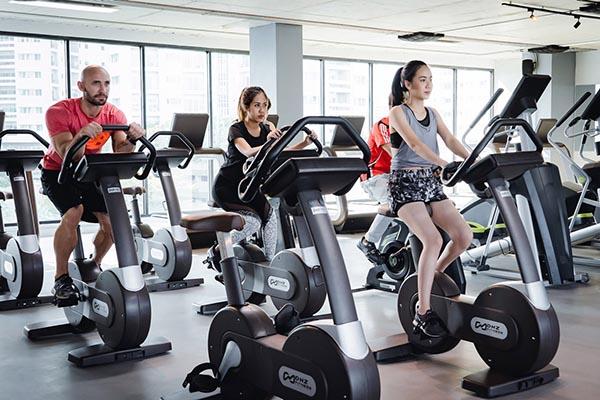 IQ Fitness cardio machines