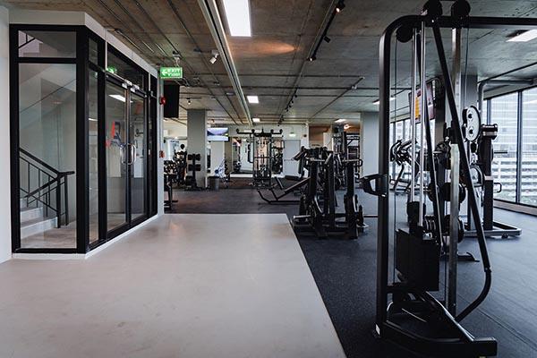 IQ Fitness weight machines